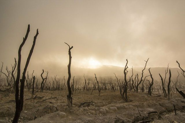 Nestlé steht in der Kritik, in Dürre-Regionen Wasser abzupumpen.