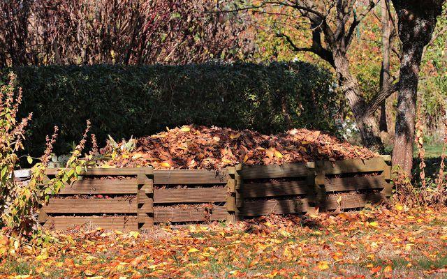 Control your consumption compost pile