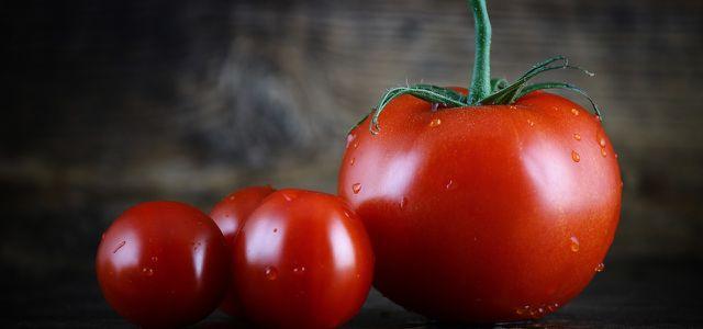 Tomaten einfrieren