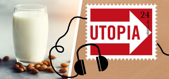 Utopia-Podcast: Pflanzendrinks, Milchalternativen