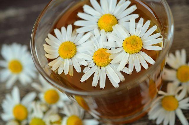 Kamillentee hilft bei Magen-Darm-Beschwerden