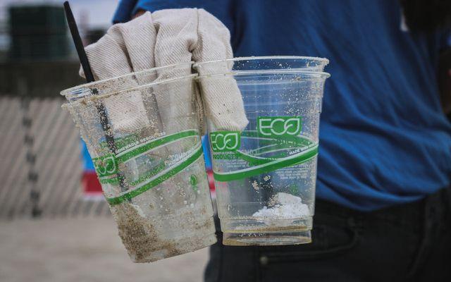 Bioplastics Compostable Cups