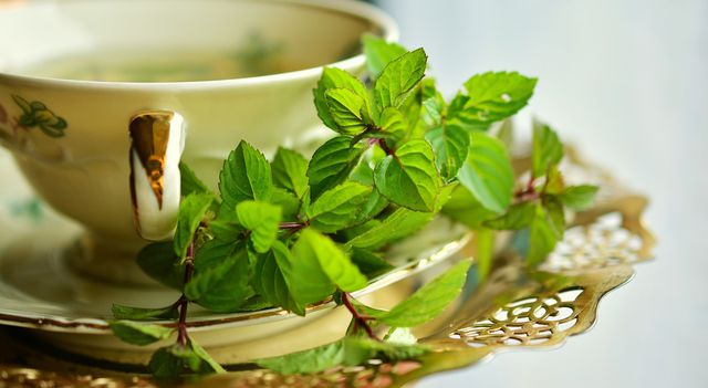 Natürlich kannst du auch frische Kräuter für deinen Tee verwenden.