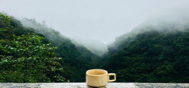 calming tea - tea for anxiety