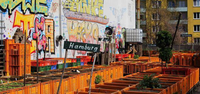Urban Gardening Projekt auf St. Pauli: das Gartendeck