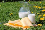 Bei Milcherzeugnissen solltest du besser zum Bio-Produkt greifen.