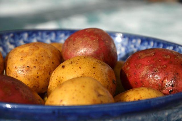 Die Kartoffelschale schützt die wertvollen Vitamine und Geschmacksstoffe in der Knolle.