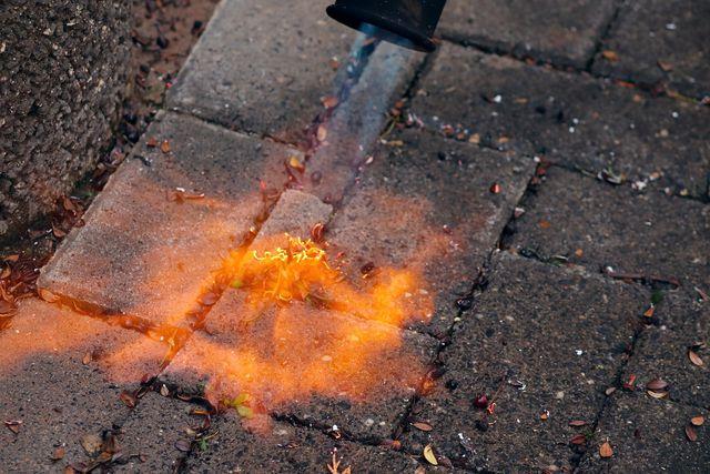 Damit du dich nicht verletzt, solltest du besser nicht zum Gasbrenner greifen, um Flechten zu entfernen.