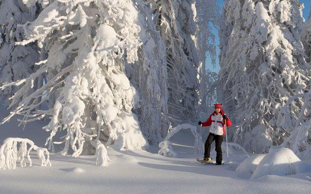 Wikinger Reisen Finnland Urlaub Winterreisen Schneeschuh-Wanderung