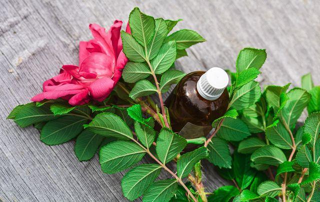 Rosenwasser in der Köperpflege wirkt entspannend
