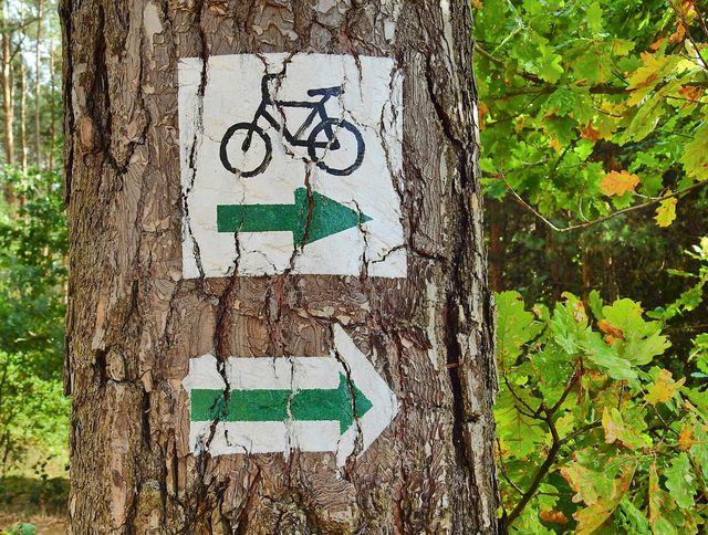 Eine Radtour ist eine umweltfreundliche Alternative zur Pauschalreise