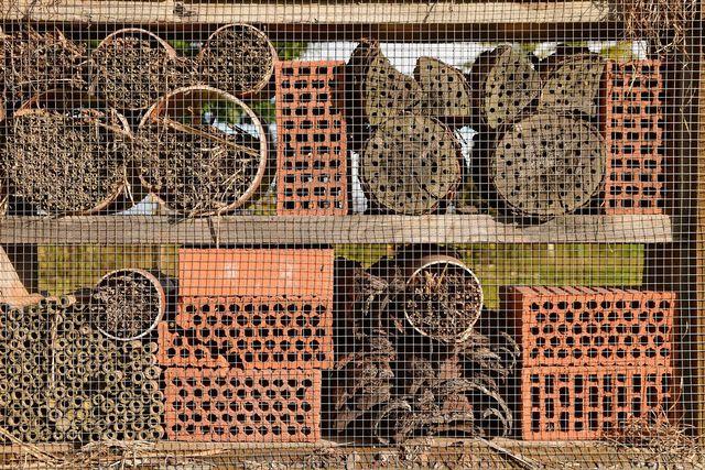 So besser nicht: Diese Wildbienen-Nisthilfe besteht aus rissigem Holz und Ziegeln mit zu weiten Öffnungen.