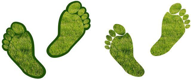 Die Ökobilanz kann dir helfen, ein nachhaltiges Leben zu führen