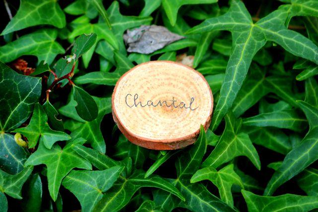 Kleine Holzscheiben haben zwei Funktionen: als Namensschild und Gastgeschenk in einem.