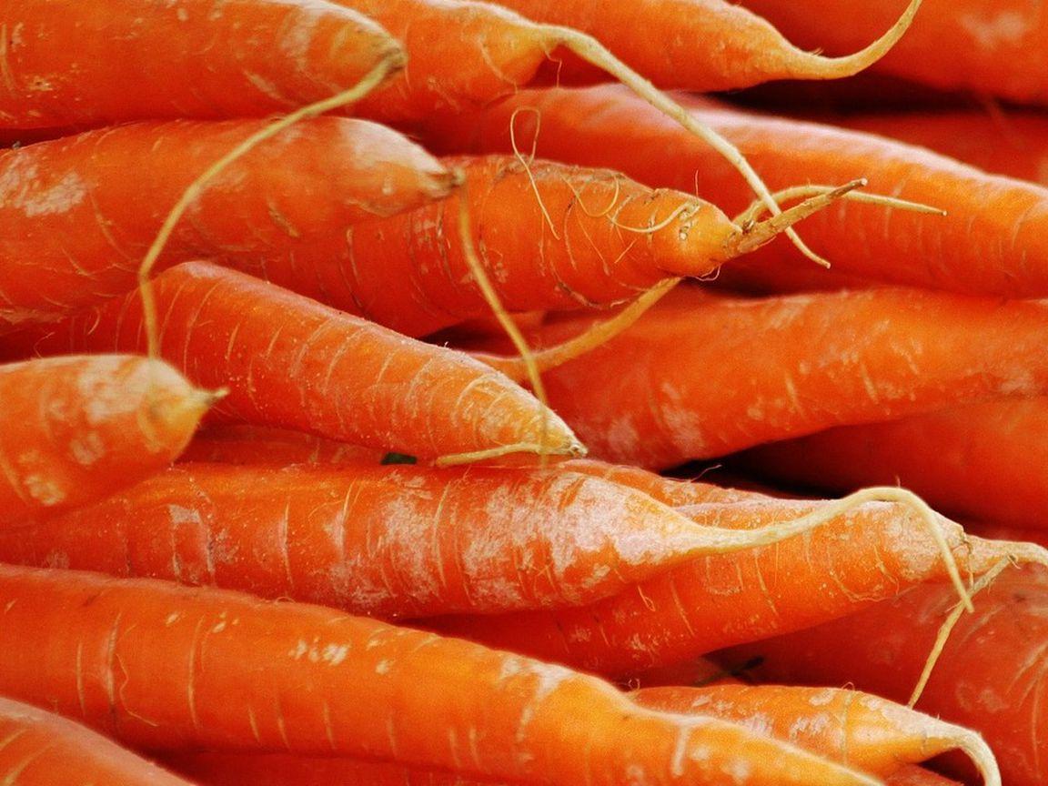 Möhren lagern So bleiben Karotten lange haltbar   Utopia.de