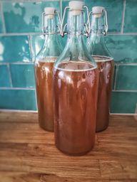 Probiotische Bakterien als leckerer Drink gibt es mit Kombucha.