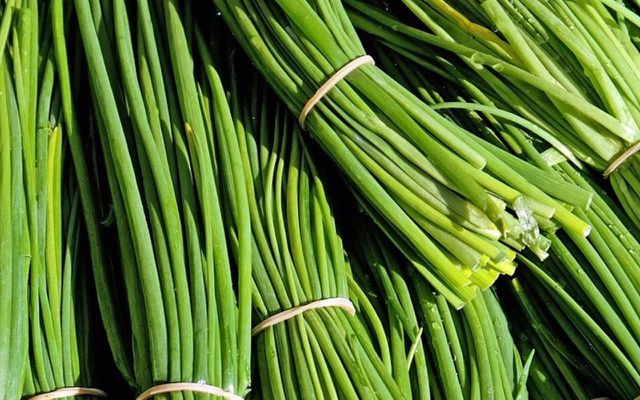 Drying chives