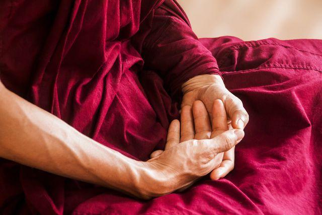 Ahimsa bedeutet, Frieden mit der Mitwelt zu schließen und Herzensliebe zu entwickeln.