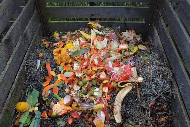 Ein Komposthaufen ersetzt den Biomüll
