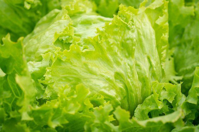 100 Gramm Eisbergsalat enthalten nur knapp 15 Kalorien.