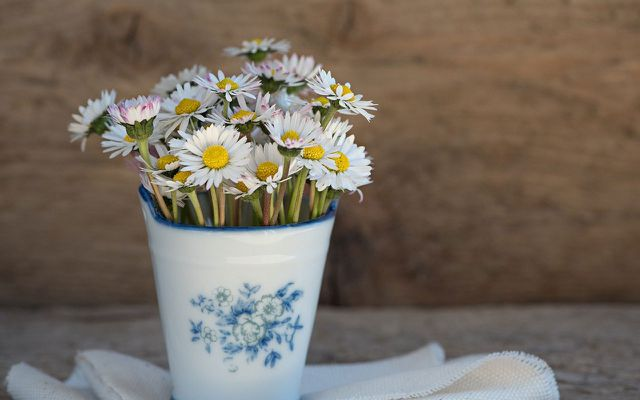 Regularly refresh the water to make cut flowers last longer