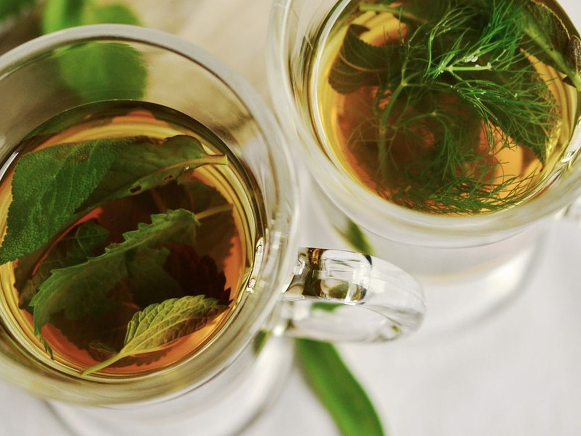 Stinging Nettle Tea: Benefits, Dosage, and Side Effects - Utopia