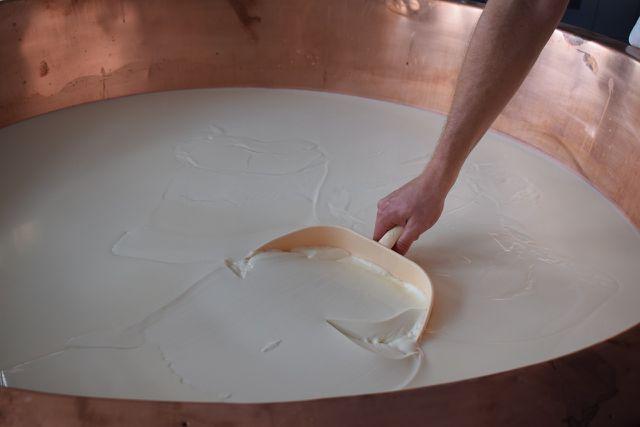 Mikrobielles Lab sorgt dafür, dass die Milch gerinnt.