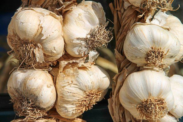 Knoblauch ist gesund - das zeigen zahlreiche Studien.