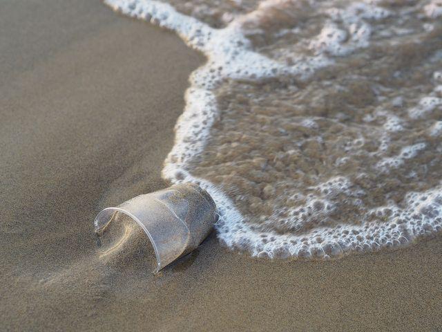Plastikmüll ist fatal für die Umwelt