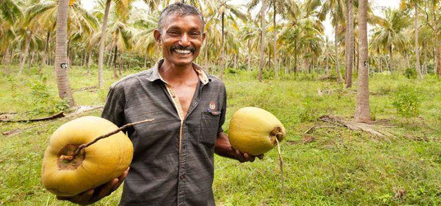 Rapunzel fair bio nachhaltig Kokosöl