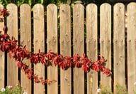 Aus einem alten Zaun entsteht mit wenigen Handgriffen ein Sichtschutz für den Balkon.