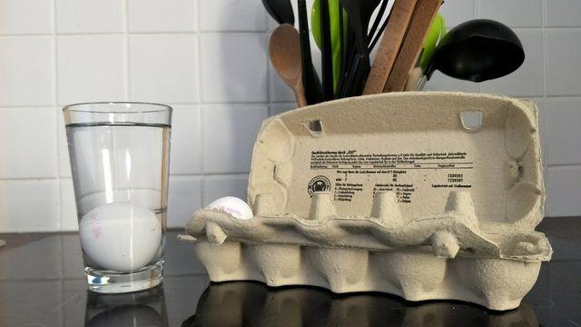 Der Wasser-Check ist ein verlässlicher Eier-Test.