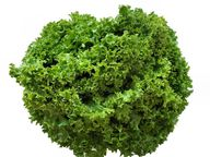 Auch Friseesalat enthält viele Vitamine und Mineralstoffe.