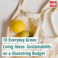 10 Everyday Green Living Ideas: Sustainability on a Shoestring Budget