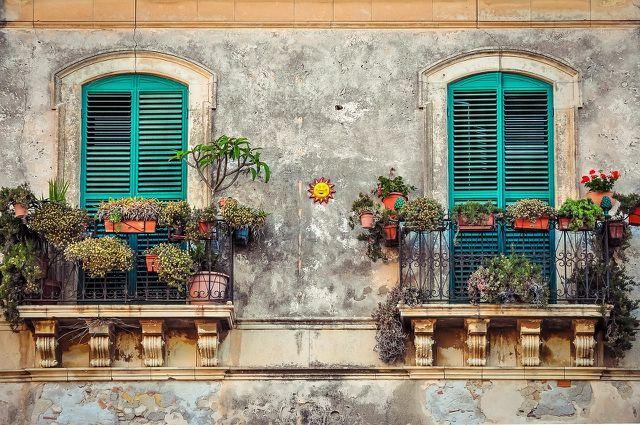 Zum Gärtnern brauchst du keinen Garten – ein Balkon oder Fensterbänke reichen aus.
