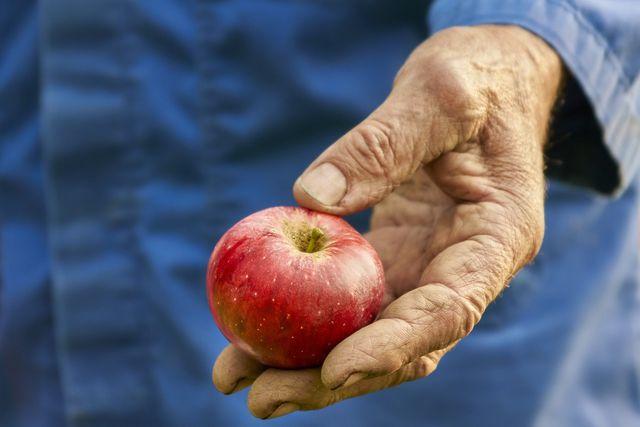 Pektin wird unter anderem aus Äpfeln gewonnen.