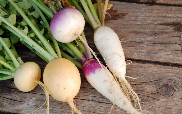 Alte Gemüsesorte: Mairübe