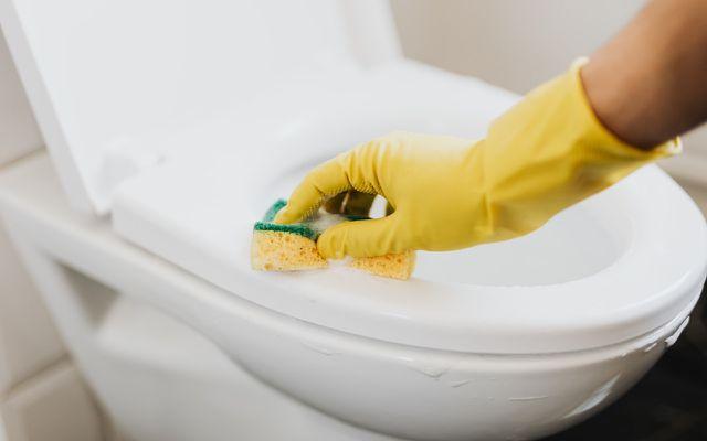 homemade toilet bowl cleaner