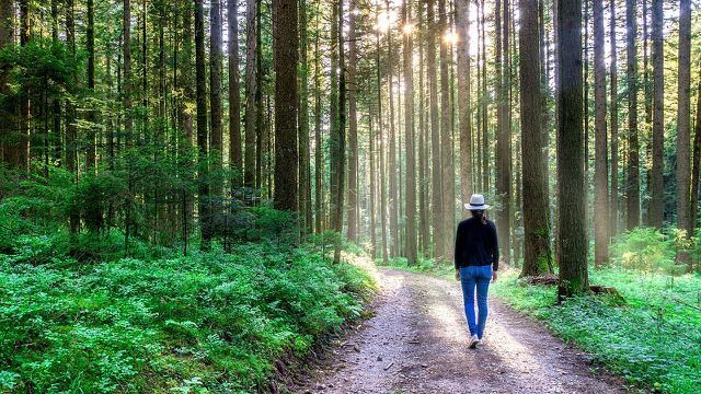 Entspannung und körperlicher Ausgleich helfen Konzentrationsschwäche entgegen zu wirken.