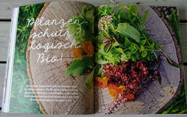 Buchtipp: Jetzt haben wir den Salat - Biogarten-Ratgeber