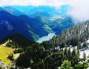 Das Ökosystem See bietet vielen Organismen Lebensraum