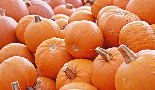 Pumpkin Spice eignet sich nicht nur für Kürbisgerichte.