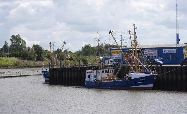 Eine Fischereireform der EU von 2013 soll die Überfischung verringern.
