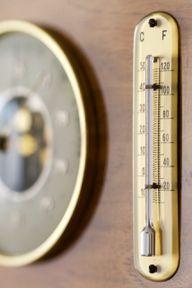 Milben bevorzugen hohe Temperaturen in Kombination mit einer hohen Luftfeuchtigkeit.