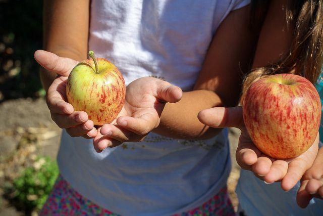 Mit frischem Obst und Gemüse essen Kinder ausreichend Vitamine.