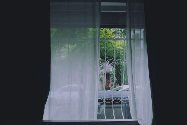 Durch offene Fenster gelangen Baumwanzen leicht ins Haus.