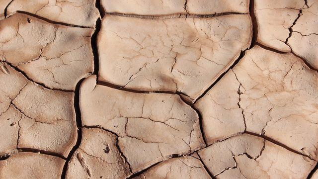 Klimakrise Dürren Klimawandel