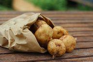 Kartoffeln sind die regionale Grundzutat für Schupfnudeln.