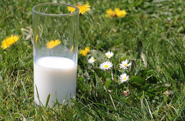 Bei der Mayr Kur löffelst du Milch, statt sie mit einem Schluck zu trinken.