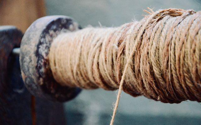 is wool vegan